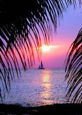 SUPERB PALM TREE SAILBOAT SUNSET #87 QUALITY FRAMED CANVAS PICTURE WALL ART A1
