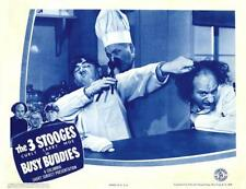 The 3 STOOGES With MOE CURLY LARRY In BUSY BUDDIES 11x14 LC Print 1944
