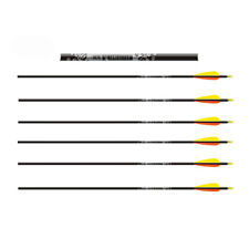 Easton Archery Gamegetter Spine 340 Alliage XX75 Compound Bow Arrows * 6 Pack *