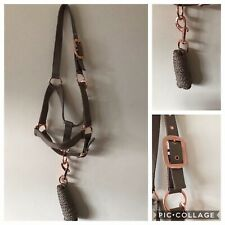 Headcollar and Lead Rope Set, Rose Gold & Sand, FULL FREE UK Postage