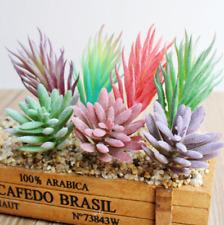 Artificial Succulents Plastic Plant Fake Cactus Floral Garden Office Decor