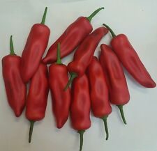 10 X large Artificial fake red large chilli peppers Rrp $5.95 each! Home decor