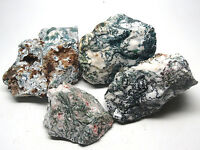 5 LB LOT OF WHITE TREE MOSS AGATE ROUGH FROM INDIA