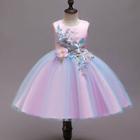 Flower Girl Embroidery Tutu Dress Wedding Bridesmaid Junior Communion Prom Gown