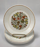 """Set of 6 Corelle Corning INDIAN SUMMER Floral Lunch Salad 8.5"""" Plates #1 AA"""