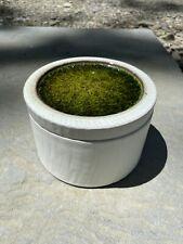 Jonathan Adler Green Grog Ice Lidded Stoneware Box - Handmade In Peru