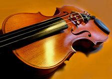 Alte 4/4 Geige mit Originalzettel Karl Höfner Violine Violon