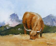 Original Oil painting - farm art - highland cattle - by j payne
