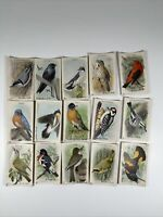 ARM & HAMMER USEFUL BIRDS OF AMERICA NINTH SERIES 1-15 TRADING CARDS COMPLETE