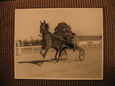 "World Record Standardbred Race Horse ""Little Pat"" & Charles Lacey Vintage Photo"