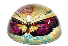 """Beautiful """"Butterfly"""" Glass Domed Paperweight in Gift Box!"""