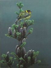 Robert Bateman CAPE MAY WARBLER & BALSAM Sold Out Limited Edition