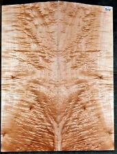 FLAME TIGER CURLY MAPLE #7110 LUTHIER Wild 5A Guitar Top Set 23.5 x 17.75 x .625