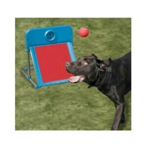 Rosewood Dog Agility Range Flyball Training, Activity Exercise Play Ball Toy Set