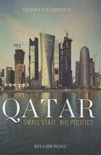 Qatar: Small State, Big Politics by Kamrava, Mehran