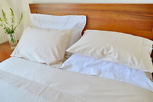Single Bed Fitted Sheet+1 Pillow Case 1000TC/10cm2 Pure Cotton Plain Ivory