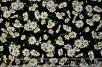 By the 1/2 yd cotton quilt fabric Reverie by Chong-A Hwang white daisies flowers