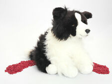 Teddy Hermann Plüschtier Hund Border Collie 30cm
