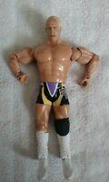 "Hard Core ""Crash"" Holly WWE Wrestling 7"" Action Figure-2003 Jakks Pacific"