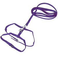 Leash collar + ADJUSTABLE NYLON HARNESS FOR CAT KITTEN Length 1.2m - Purple Y3E5