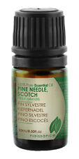 Naissance Pine Needle Scotch Essential Oil 10ml 100% Pure & Natural Aromatherapy