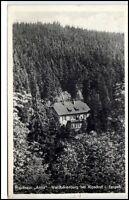 Waldbärenburg Sachsen DDR AK 1960 Partie am Waldhaus Anna bei Kipsdorf gelaufen