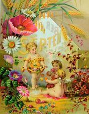 1884 Lovely D. Crawford & Co. St, Louis, MO Calendar Victorian Trade Card &R