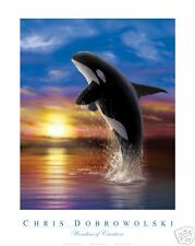 NEW Killer Whale III 16x20 Fine Art Print Dobrowolski