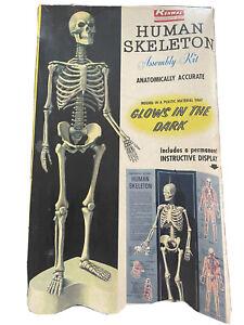Vintage Renwal Human Skeleton Assembly Model Kit 1959. •• Rare**