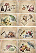 BÜGELBILD-Vintage-Shabby-Nostalgie-Birds & Flowers -3348