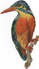Victorian Die Cut Scrap Colorful Orange Bird on a Branch c1880