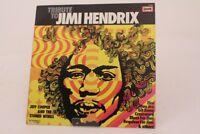 Tribute to Jimi Hendrix E454 Jeff Cooper and the Stoned Wings Vinyl Schallplatte