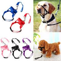 Pet Dog Muzzle Halti Style Head Collar Stops Puppy Pulling Halter Training Reign