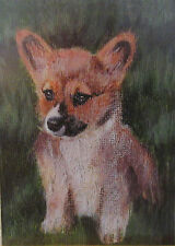Baby Dog Corgi ACEO Limited Edition Giclee Print Of Original Acrylic Painting