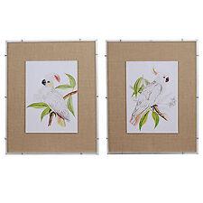 "White Cockatoo Framed Prints 24""x30"" Set Of 2 - 42101"