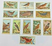 W.D.& H.O. Wills British Birds - LOT OF 12 Cigarette Cards