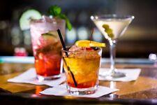 Bartender Recipes 1,000 Recipe Ebook in PDF on CD, Free Shipping