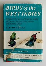 Earle POOLE, Don RECKELBERRY / Guide of Birds of the West Indies 1st ed 007