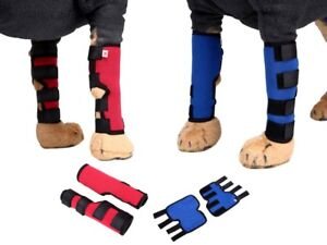 Hunde Bandage Bein Links Rechts Arthrose Gelenke Stützen Blau oder Rot S M L