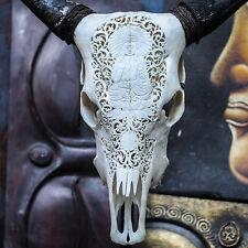 Hand Carved Buddha Steer Cow Skull Horns Bull Longhorns Buffalo Taxidermy