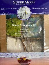 Miniature Fairy Garden ~ Mixed Reindeer Moss Sea Glass Sand Beach Terrarium Kit