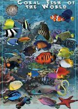 Ryby koralowe - dekoracyjny plakat A2 + plakat GRATIS + darmowa wysyłka!