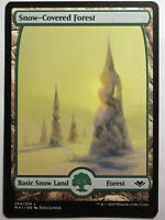 Snow-Covered Forest     Mtg Magic English
