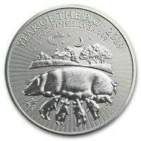 2019 ~ 1 ~ OZ  999 SILVER ~ YEAR of the PIG ~ UNITED KINGDOM ~ GEM COIN ~ $48.88