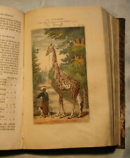 Buffon-Büffon`s Vierfüssige Thiere-2.Band-Erste u. einzige Ausgabe-Cöln 1837