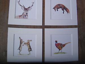 "Watercolour Hares, Pheasant,Stag, Fox  Prints   x 4, in mounts BIGGER 8"" x 8"""