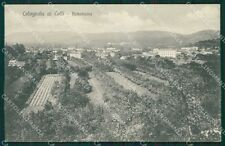 Verona Colognola ai Colli cartolina QK7465