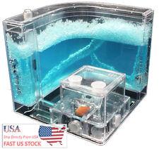 USA Shipping Ant Farm Labyrinth Nursery Clear Plastic Maze Feeding Ant House X1