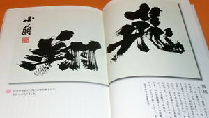 Calligraphy by the Japanese woman of the Down syndrome book chinese #0462