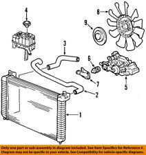 GM OEM Radiator Coolant-Lower Hose 25841843